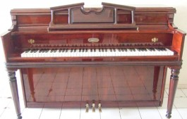 Jual Piano Lowrey