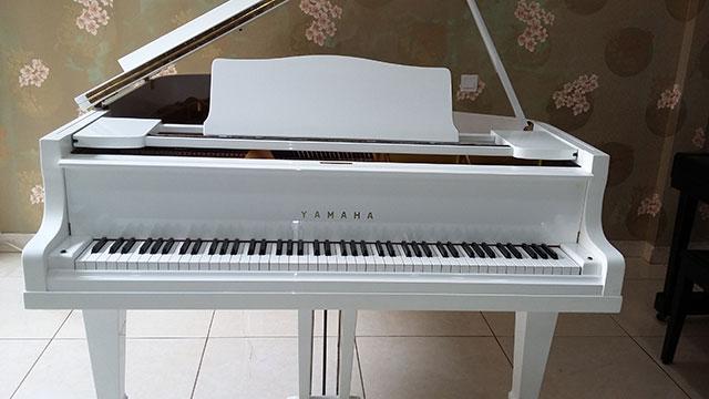 Gambar Piano Grand Yamaha type G 2