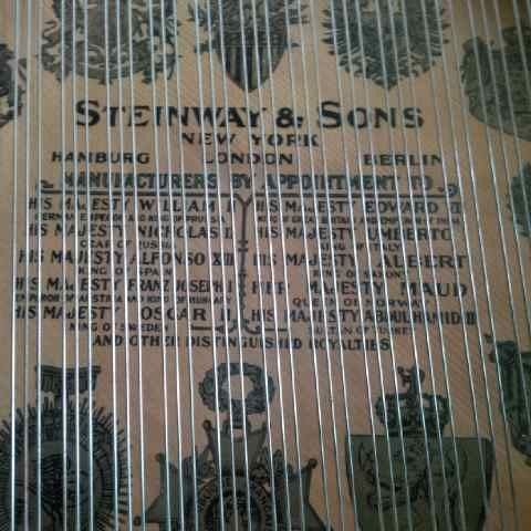 steinway and sons type m raja-raja
