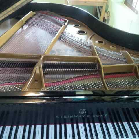 steinway and sons type m rangka