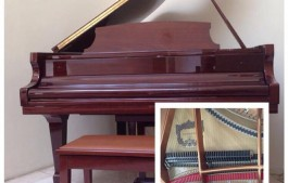 Jual Piano Baby Grand Disklavier Pramberger Wifi ipod