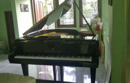 Jual Grand Piano Steinway & Sons Type M
