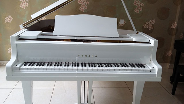 Gambar Piano Grand Yamaha type G 2